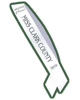 united_states_of_americas_local_sash_2019